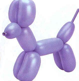 Modeling Animal Balloons 50pk, Assorted