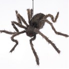 Halloween Spider Poseable Legs