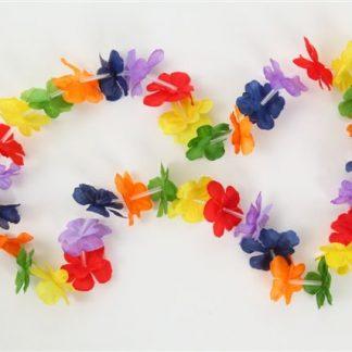 Hawaiian Leis Rainbow Flower